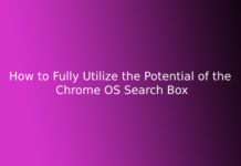How to Fully Utilize the Potential of the Chrome OS Search Box