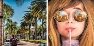 Adobe Photoshop Elements 2022 and Adobe Premiere Elements 2022 have been made available to the public.